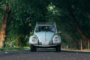 vw bug framed by trees