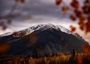 mountain framed by leaves