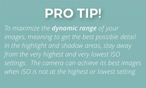 pro-tip-how-iso-affects-dynamic-range