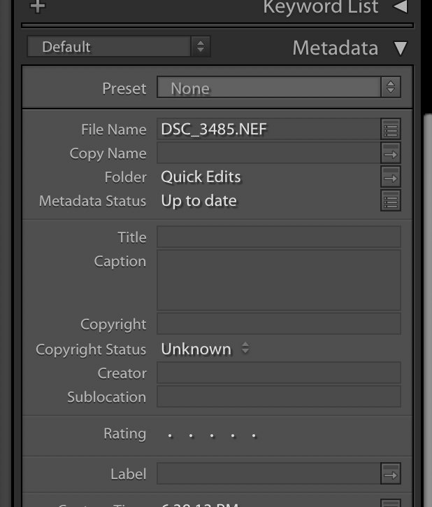 metadata panel in Lightroom showing how to add copyright info