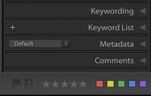 keywording panel and keyword list panel in lightroom