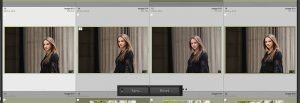 four images inside lightroom library module with sync button