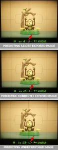 three images of a monkey showing DSLR camera meter to learn metering modes in photography