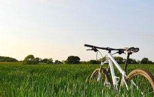 a bike in grass on the right side of the frame demonstrating the rule of space in photography