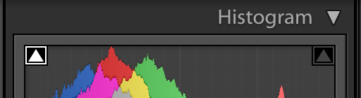 image of the histogram panel in lightroom showing only shadow clipping turned on