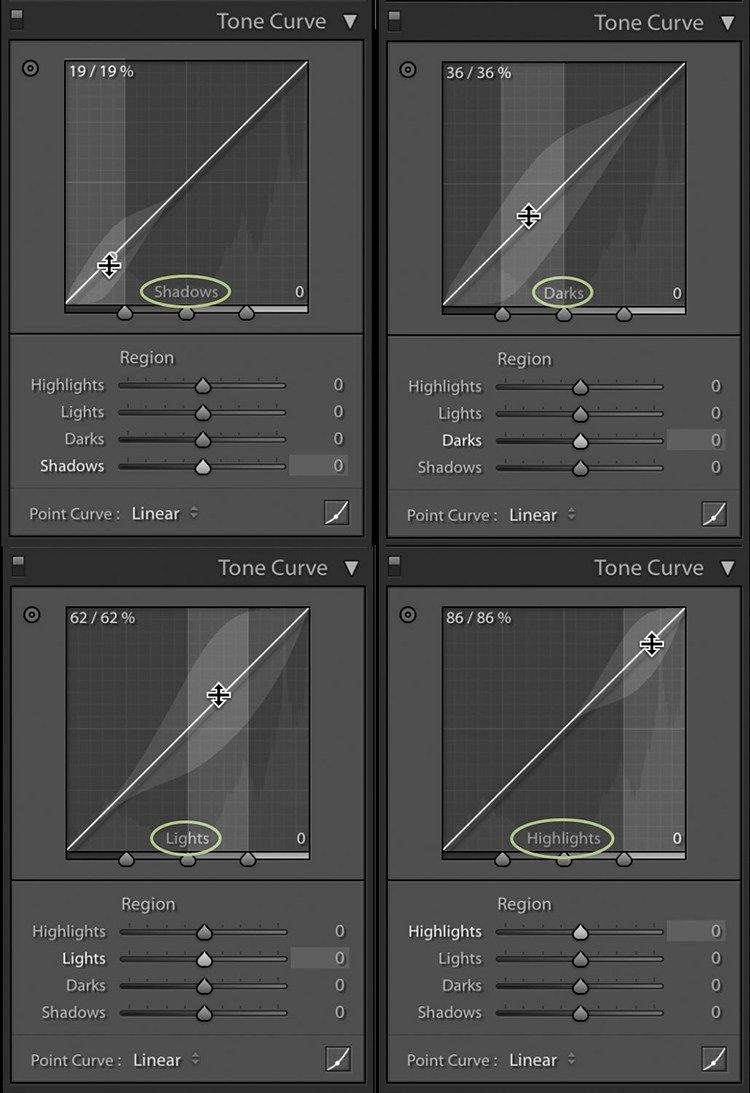 image showing all four regions of the region curve in Lightroom: shadows, darks, lights, and highlights