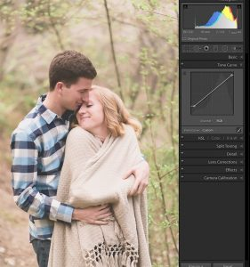 image showing engaged couple snuggling in trees with a matte finish caused by the point tone curve in lightroom