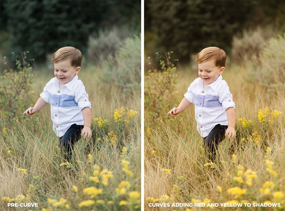 the same image of a young boy running through a field one image with regular colors, the second with warmth added to the shadows with the Lightroom tone curve
