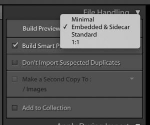 Image of the file handling panel in the import dialog box in Lightroom.