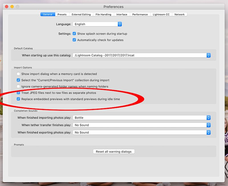 preferences dialog box in Lightroom classic showing the new replace embedded previews option.