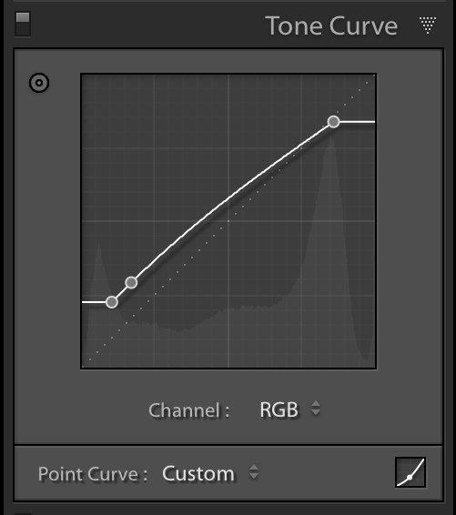 tone curve panel in lightroom