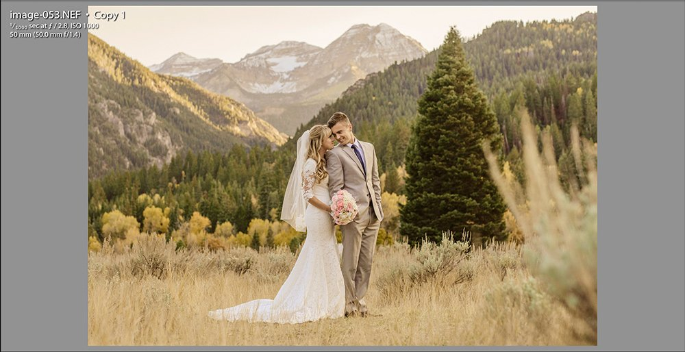 image of bride and groom in mountains showing the word copy signifying this as a virtual copy in lightroom
