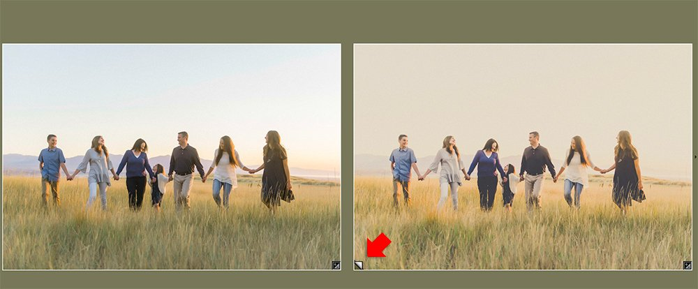 The same image twice of a family walking through grasses showing the icon the shows which image is a virtual copy in Lightroom