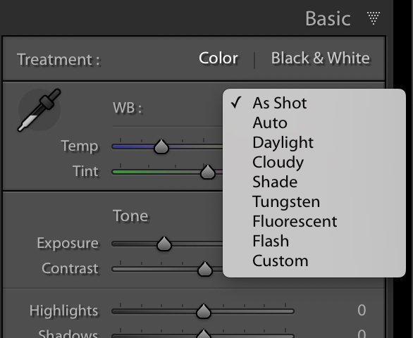 The white balance presets in the basic panel of Lightroom Classic CC.