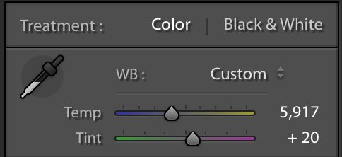 The white balance sliders in the basic panel of Lightroom Classic CC.