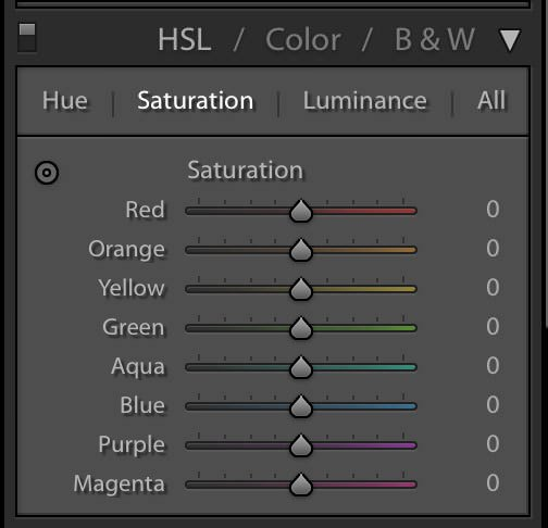 Image showing the saturation tab of the HSL panel in Lightroom Classic CC.