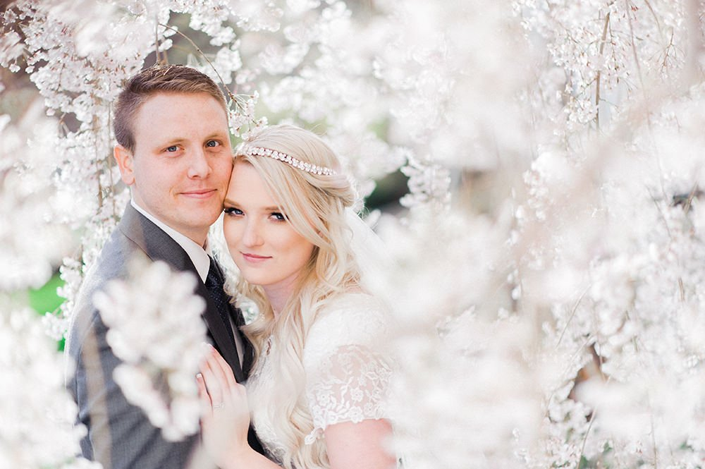bride and groom surrounded by cherry blossoms shot with a Nikon 85mm 1.8 prime lens.